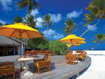 Ristorante sulla spiaggia - Ristorante sulla spiaggia, palme.