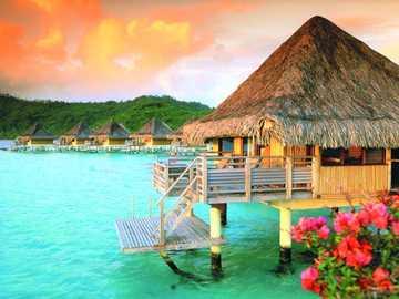 Domki Na Wodzie - Domki Na Wodzie W Tropikach