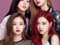 BLACKPINK - Blackpink ist eine südkoreanische Mädchengruppe, die von YG Entertainment gegründet wurde und aus
