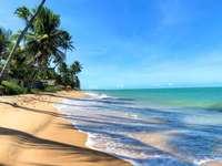 Strand táj