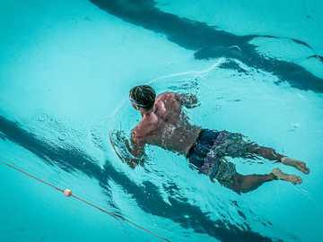 człowiek, pływanie w basenie - Pływak w Bondi Icebergs. Bondi Beach NSW, Australia