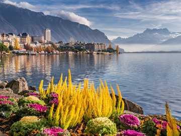 Panorama - Beautiful Switzerland - mountains, lakes, flowers