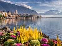 Πανόραμα - Όμορφη Ελβετία - βουνά, λίμνες, λουλούδια