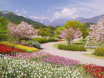 Alps azumino - Japonia National Government Park