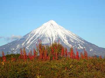 krajobraz z wulkanem - kwiaty pod wulkanem - wiosna