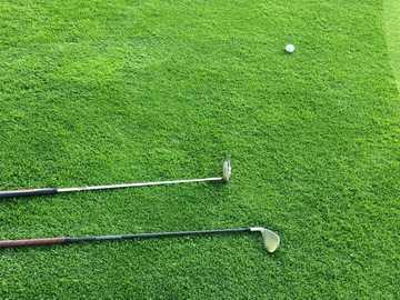 Klub golfowy na zielono - dwa kije golfowe na polu zielonej trawie.