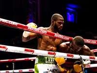 deux hommes à l'intérieur du ring de boxe