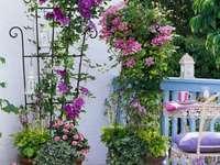 idee pentru o gradina de flori pe terasa
