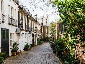 Mews road - brown pavement road between trees and house during daytime. Kynance Mews, London, United Kingdom