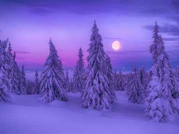 WINTER LANDSCAPE. - Winter landscape with the moon in the background