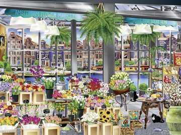 kwiaciarnia - Kwiaciarnia, kwiaty, koty, Amsterdam