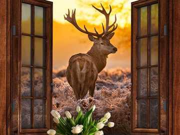 STANDING DEER - proud deer of deserts
