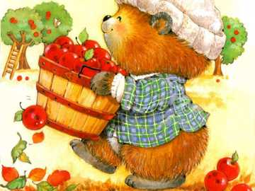 Picking red apples. - Picking red apples.