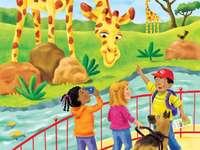 En se promenant dans le zoo