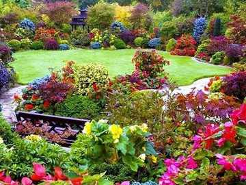 flower-garden - flower garden - flowing colors
