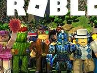 Dies ist das Spiel Roblox.