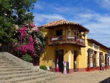 Cuba - architektura - kolorowa uliczka - kwitnące krzewy