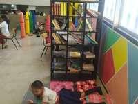 Knihovna barev