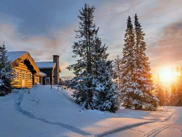 WINTER LANDSCAPE - Winter landscape with rising sun and houses