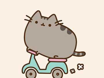 pusheen goes on a motorcycle - riding a motorcycle is very beautiful and gray in color