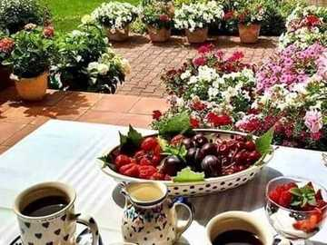 of coffee in the garden - of coffee in the garden - a fresh morning