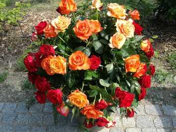 Bunter Rosenstrauß - Schöne Rosen in einer Vase.