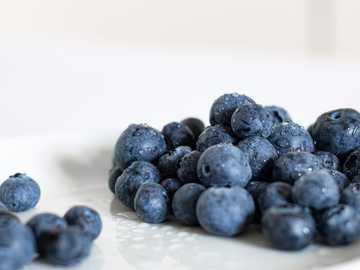 blueberries - blue berries on white ceramic plate. Verona, VR, Italia