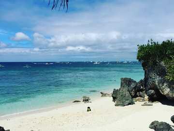 Praia Branca - árvores verdes na praia de areia branca durante o dia. Boracay, Malay, Filipinas