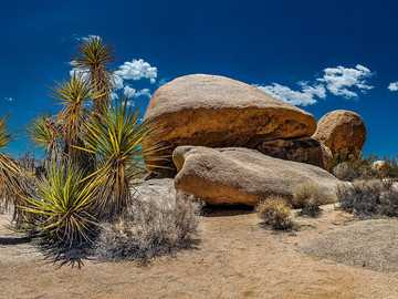 Joshua Tree National Park - California - the eastern part of the park lies within the Colorado Desert