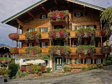 Geraniums of different colors - Kitzbuhel is a city in Austria