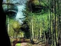 A természet arca