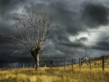 Clima cerrado - tormenta a la vista - Clima cerrado - tormenta a la vista