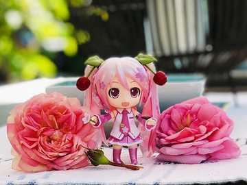 Miku zwischen zwei Rosen - Miku zwischen zwei schönen Rosen