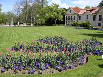 Prague - Czech Republic - Flower discount in the garden of Prague Castle.