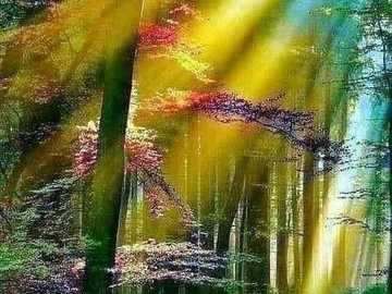 kolory natury - kolory natury - słońce w lesie
