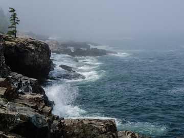 brązowa skalista góra obok zbiornika wodnego w ciągu dnia - Morze i wiatr uderzają o brzeg Parku Narodowego Acadia w mglisty letni poranek. .