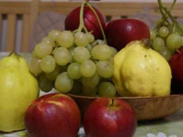 fructe de toamnă - măr, strugure, gutuie