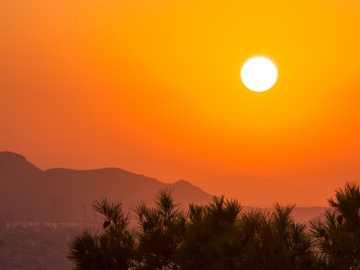 drzewa podczas złotej godziny - Zachód słońca z góry Lykabettus. Mount Lycabettus, Ateny, Grecja