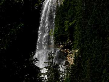 The cascade - green trees near waterfalls during daytime. Glattalpsee, Muotathal, Suiza