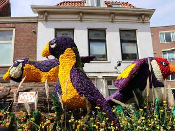 FLOWER PARADE IN THE NETHERLANDS - Flower Parade in the Netherlands - Bloemencorso 2019 - My Way Trip