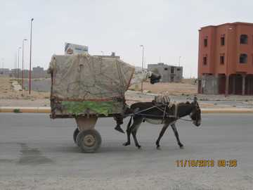 Freight taxi - Typical Moroccan means of transport