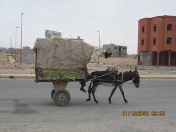 Taxi merci - Mezzi di trasporto tipici marocchini