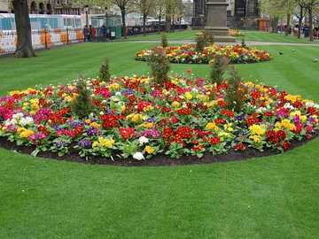 FLOWER FLOWER - Flower beds on Princes Street