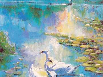Pareja de cisnes en el mar - Pareja de cisnes en el lago con nenúfares.