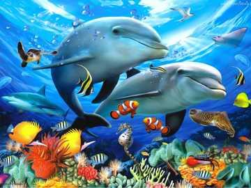 Dauphins sur le récif - Récif, corail, poissons, dauphins   Dauphins, Dauphins, Requins