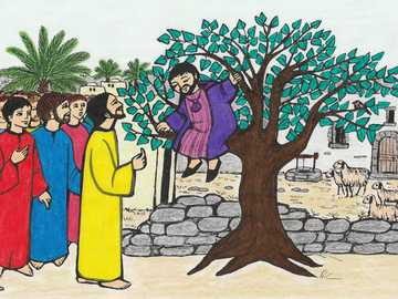 Pour les enfants: Zachée grimpe à un arbre - Pour les enfants: Zachée grimpe à un arbre