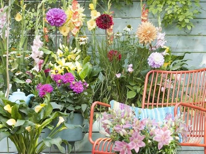Bouquets d'été. - Puzzle: bouquets d'été.