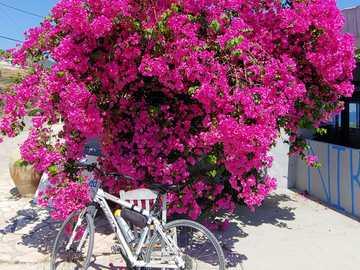 wycieczka rowerowa po grecji - wycieczka rowerowa po grecji