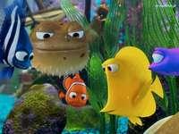Procurando Nemo, Procurando Nemo, O Aquário
