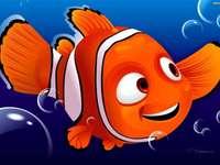 Fish, Nemo, Finding Nemo, Finding Nemo